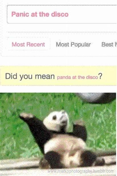 Disco Panda Mean Did Panic Funny Memes