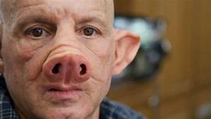 Scientists Create Pig-Human Hybrid - Chimera Explained ...