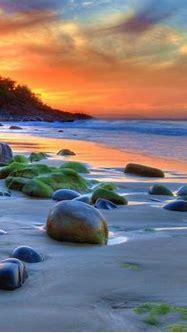 Sunset Ocean Sandy Beach Rocks Green Movi Water Nature 4k ...