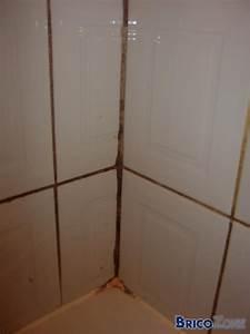 nettoyer moisissure salle de bain evtod With nettoyer joints carrelage