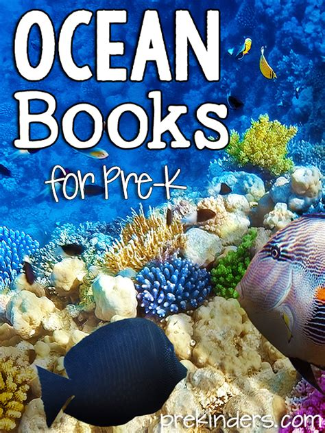 preschool books about the ocean books about animals for pre k prekinders 155