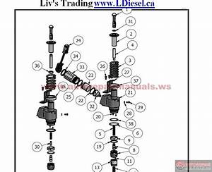 Cummins Injector Parts List