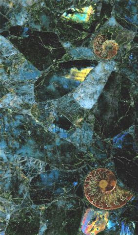 labradorite countertop cost labradorite countertop with embedded ammonites for the