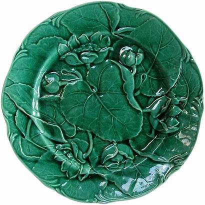 Majolica English Pattern Glaze Plate Antique Waterlily