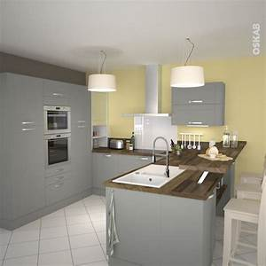 Cuisine equipee grise bois moderne filipen gris mat for Idee deco cuisine avec cuisine tout Équipée avec Électroménager