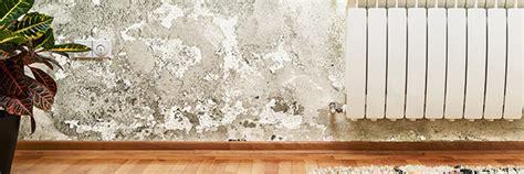 comment lutter contre l humidité dans une chambre lutter contre l humidit dans un appartement comment