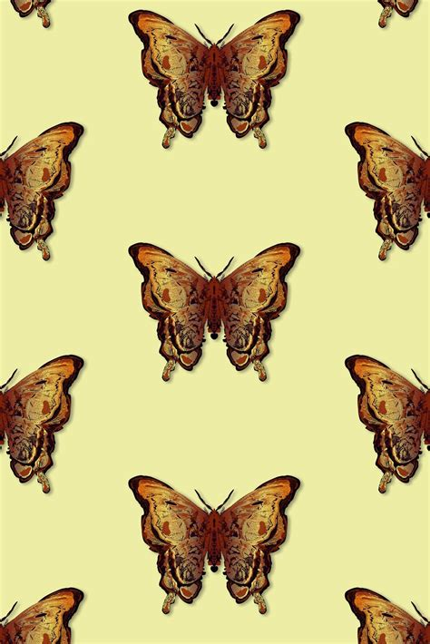 timorous beasties wallcoverings butterfly wallpaper