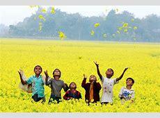 Nature's Rejoice GHEORMANIKGONJ,Bangladesh