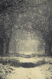 Vintage Winter Photograph by Svetlana Sewell