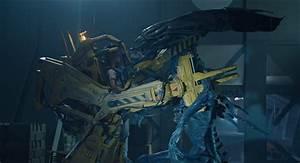 Alien 2 1986 imdb — 57 years after ellen ripley had a close