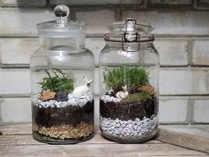 Terrarium Plante Deco : acheter terrarium plante bocal ~ Dode.kayakingforconservation.com Idées de Décoration