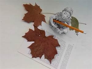 Eine Herbstgirlande Fr Buchliebhaber Aus Buchseiten