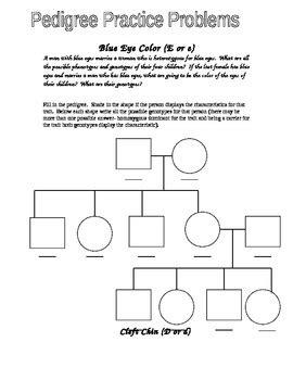 Eye Color Pedigree Worksheet By Jason Demers  Teachers Pay Teachers