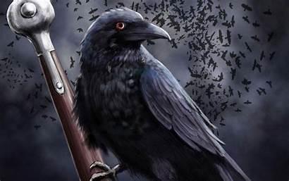 Raven Sword Desktop Wallpapers Bird Backgrounds Background