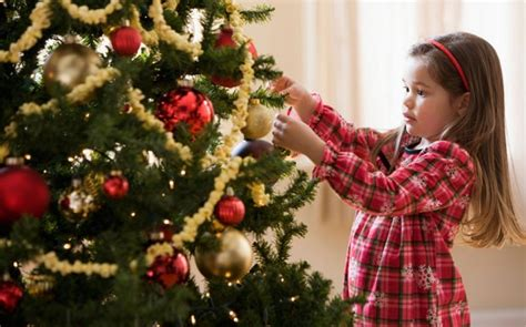 alan anderson christmas trees alan titchmarsh s top tips for looking after your tree telegraph