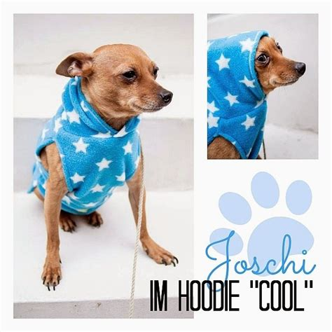 book hundehoodie sewing projects kleidung fuer