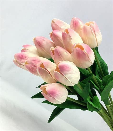 ดอกทิวลิป Tulip-Pink