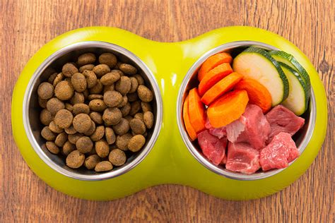 dog food homemade farm bowl shutterstock farmer fido
