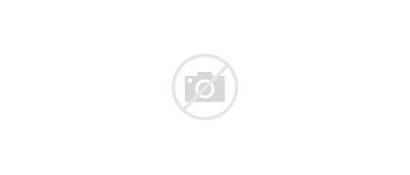 Wakanda Panther Tribes African Warrior Tribe Falls