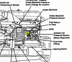 Diagrams Wiring   International Dt466 Sensor Location