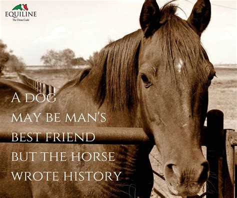horse friend quotes dog history horses poems friends equestrian mans wrote quote friendship riding equiline sayings uploaded user