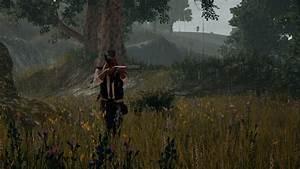 Data Miner Reveals Unreleased PlayerUnknown39s