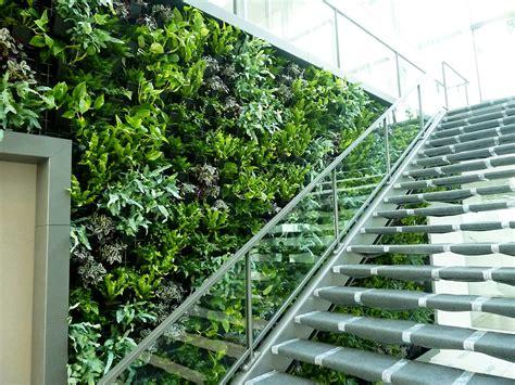 mur vegetal d interieur mur v 233 g 233 tal aude plantes la nature s invite au bureau
