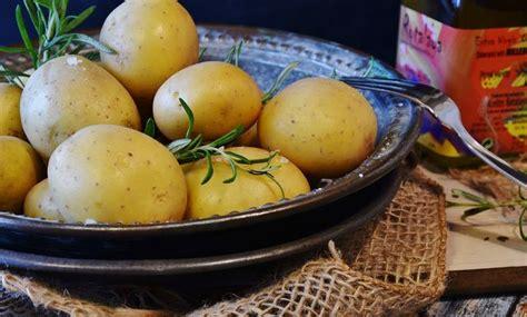 sind kartoffeln gesund sind kartoffeln gesund kohlenhydrate kalorien und