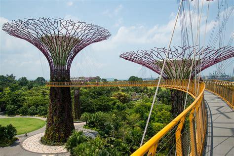 Botanischer Garten Singapur by Gardens By The Bay Botanischer Garten In Singapur