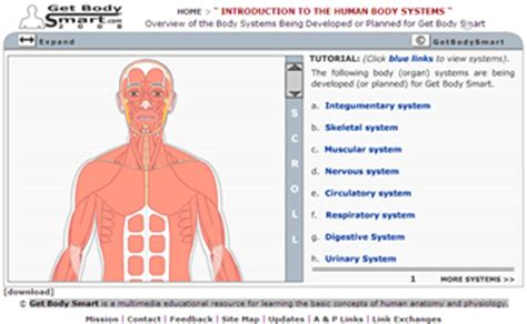 One may turn labels off to quiz oneself on anatomy. Medicine Decoded: Collection of 17 Essential Anatomy Websites4U.