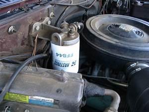 Filtro Carburante  La Sua Importanza  I Nuovi Modelli E