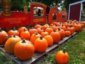 Homer Glen Pumpkin Patch by Pumpkin Patch Waukegan Il Download Free Software Motorprogs