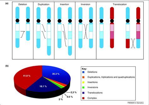 genome organization influences partner selection