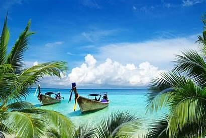 Tropical Beach Jungle Island Caribbean Vacation Landscape