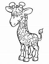 Giraffe Coloring Pages Printable Cartoon Animals Clip African sketch template