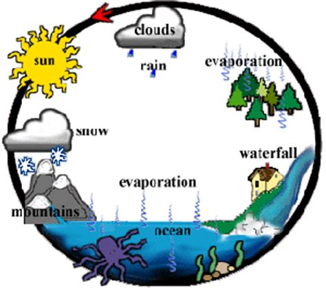 Water Cycle Diagram Earthguide by 3rd Grade Resources Science Resources