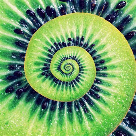 spiral hair styles kiwi gif 1114
