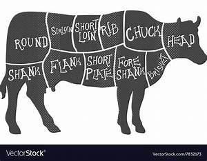 Steak Cuts Diagram