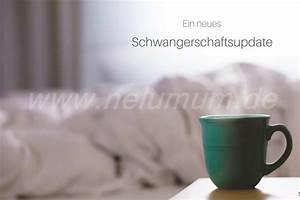 Schwangerschaft 3 Trimester : das 2 und 3 trimester nelumum ~ Frokenaadalensverden.com Haus und Dekorationen