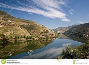 Fluss In Portugal : weinberg auf douro fluss lizenzfreie stockfotografie bild 6779847 ~ Frokenaadalensverden.com Haus und Dekorationen