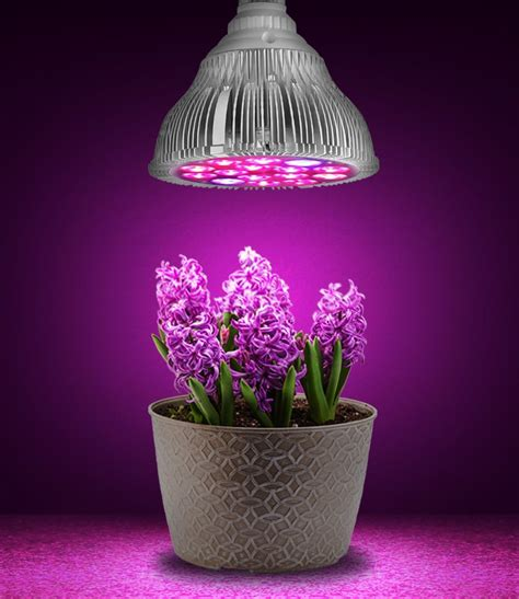 led grow light par38 10 2 blue indoor plant flowers