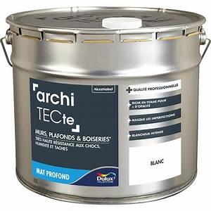 Leroy Merlin Peinture Blanche : peinture blanche mur et plafond architecte dulux valentine ~ Dailycaller-alerts.com Idées de Décoration