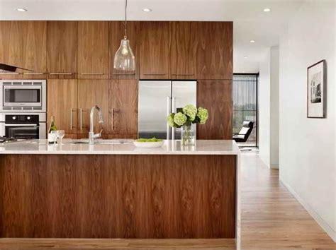 contemporary kitchen  walnut kitchen cabinets