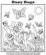 Coloring Bugs Pages Bug Preschool Worksheet Nature Activity Garden Busy Sheets Dover Puzzle Matching Easy Insect Spring Publications Spider Adult sketch template