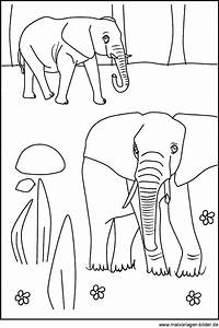 Zwei Elefanten Als Kostenlose Ausmalbilder Und Malvorlagen