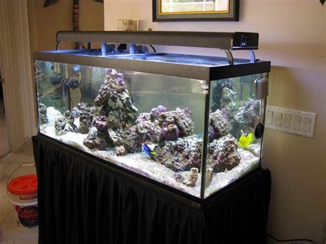 small aquarium design ideas decoration small saltwater aquarium design ideas saltwater aquarium design ideas fish bowl