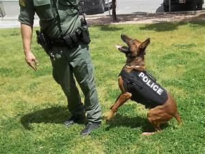 Bulletblocker bulletproof k9 standard body armor vest for Ballistic dog
