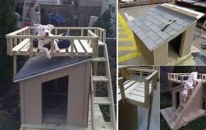 dog house plans home depot inspirational diy dog house With home depot dog house plans