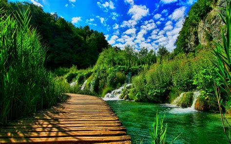 wooden pontoon bridge nature landscape hd wallpapers