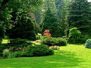 Sunny garden field Green grass nature Garden Trees spring ...